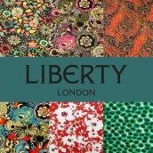 liberty-jersey2